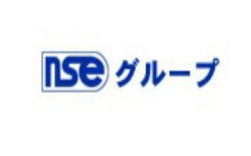 Công ty Phát triển phần mềm NSE
